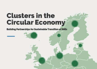 Clusters in Circular Economy